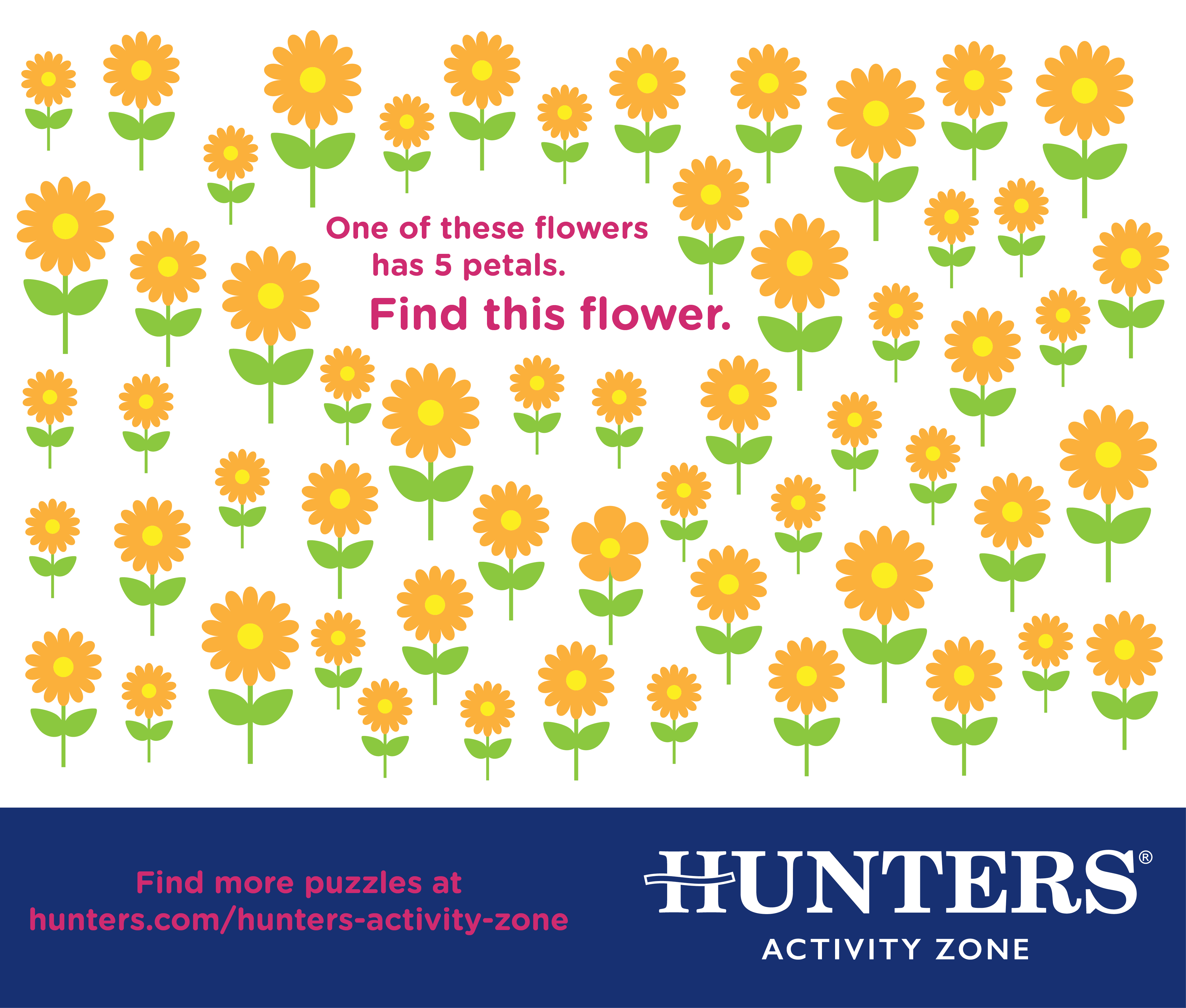 Hunters Activity Zone - 5 Flowers.jpg