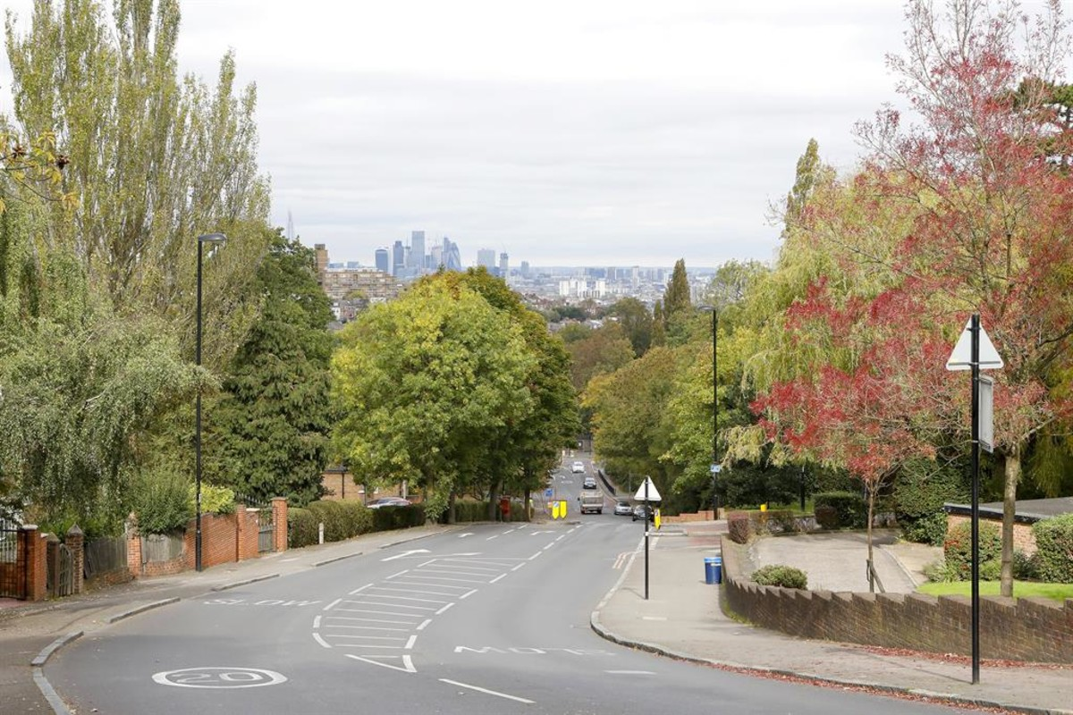 View from top of Sydenham Hill