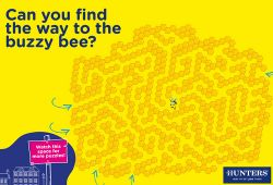 Find the bee 500x380.jpg
